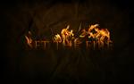 set-the-fire-1.jpg