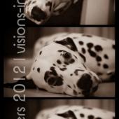 collage-humphrey13