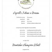 131120_ch_caprillis_i_have_a_dream_urkunde_web