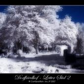 DSC_3901-01-2(C).jpg