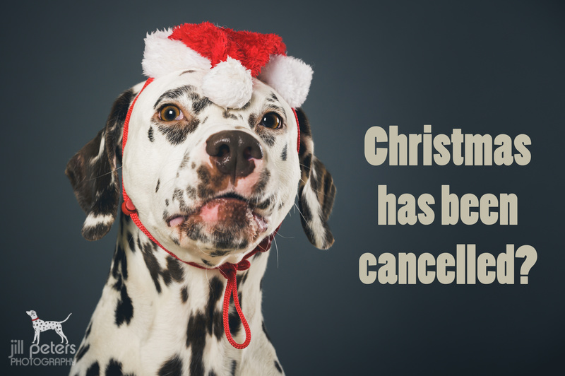 Christmas has been cancelled!