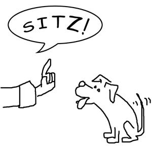 sitz-1